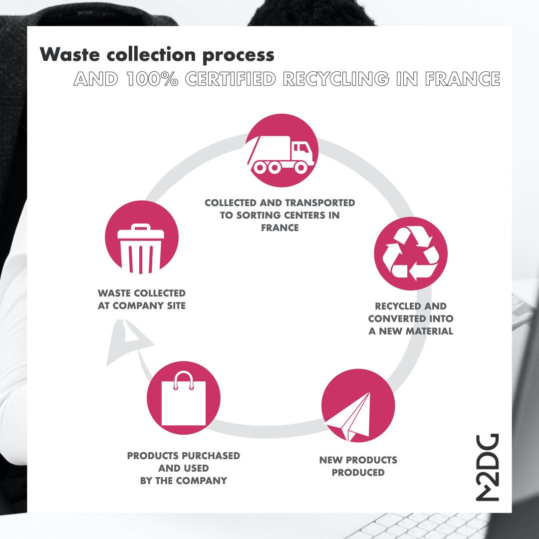 waste-collection-process